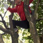 寛平も木から落ちる!ツイキャスで木から転落して骨折した動画はどこ?